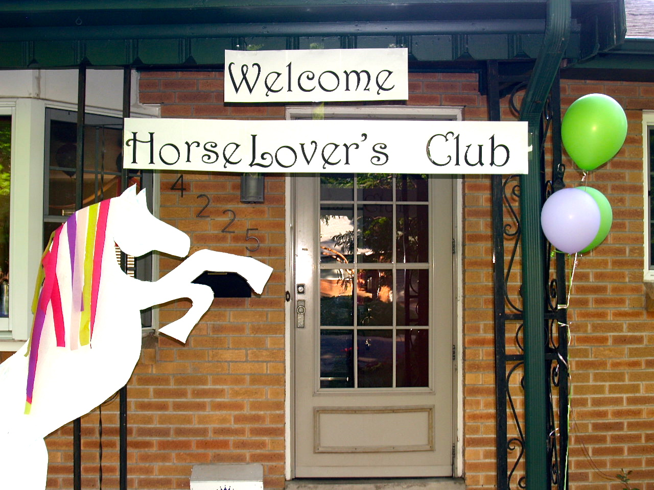 A horse party your little girl will Love!